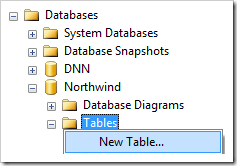 Create New Table in Northwind database using SQL Server Management Studio.